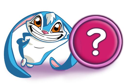 FAQ Kiko